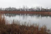 Landgoed De Canisvliet Hoeve